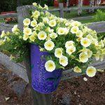 Flowers at j gregers inn